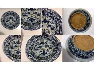 Pianto antico fenice blu bianco 40 cm Ming Cina