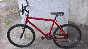 Bicicletta mountain bike funzionante