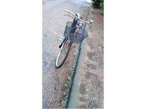 Bici donna con cestino, taglia 50, ruote 26