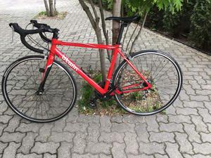 Bicicletta Corsa Forcella Carbonio