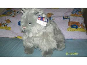 Gattino grigio nuovo