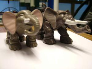 Elefanti e Delfini