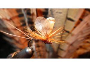 PESCA A MOSCA - 45 mosche da caccia