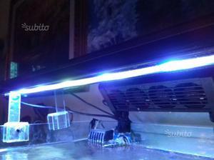 Plafoniere Per Acquario Marino A Led : Lampade a led per acquario vertex illumilux posot class