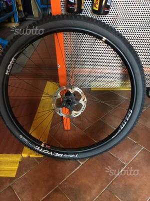 Coppia ruote MTB 29