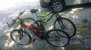 2 mountain bike da ragazzo