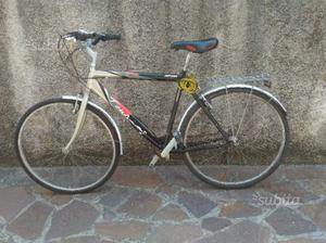 Bici uomo city bike