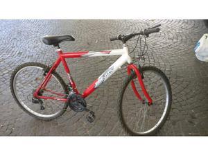 Bicicletta da uomo e ragazzo