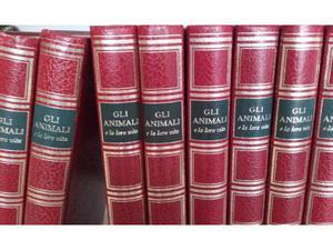 Enciclopedia Gli animali e la loro vita