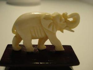 Elefantino in avorio da collezione
