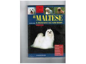 Il maltese e il bolognese