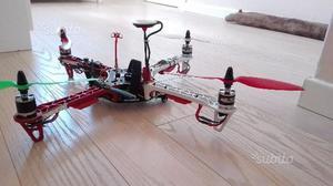 Quadricottero fy 450 con naza lite (v2)