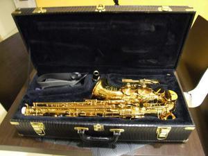 Sax sassofono contralto cannonball