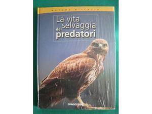 La vita selvaggia dei predatori natura d'i