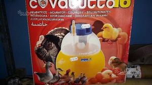 Incubatrice 16 uova di gallina