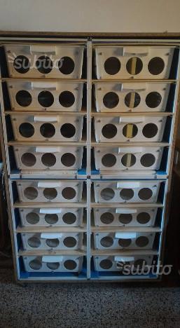Rack 16 vasche per rettili e altro