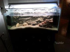 Acquario completo 300 litri posot class for Acquario 300 litri prezzo