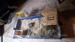 Due gabbie per conigli/cavie/criceti