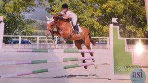 Pony Femmina Saura del