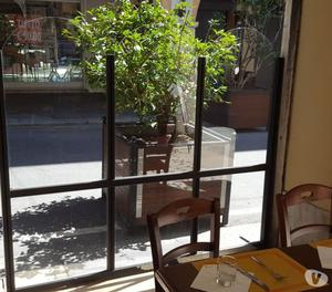 Vendo n. 2 pannelli divisori per dehor bar e ristoranti