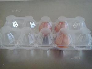 50 contenitori da 10 uova