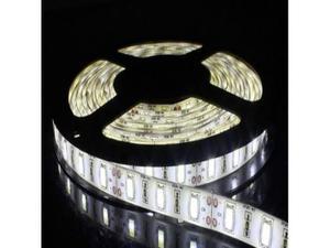 Bobina striscia 300 led smd m 12v luce bianco freddo