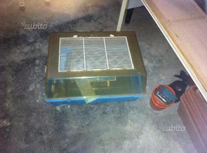 Vasca per tartarughe di acqua posot class for Filtro acqua tartarughe