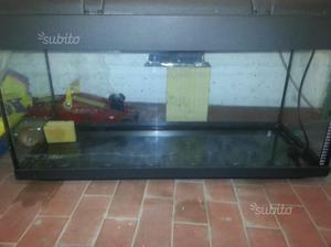 Acquario completo 20 litri posot class for Acquario 100 litri prezzo