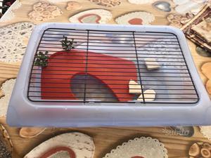 Raccoglitore vaschetta contenitore acqua posot class for Contenitore tartarughe