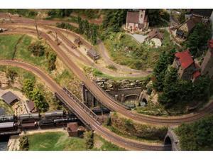 Cerco: Trenini elettrici