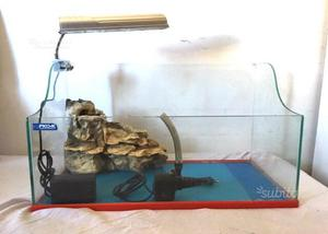 Tartarughiera completa posot class for Lampada tartarughiera
