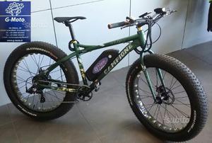 Bicicletta elettrica Campione Cosenza