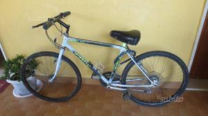 Bicicletta mountain bike vianelli