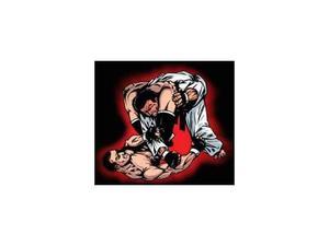 Cerco: BJJ, arti marziali miste