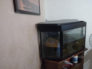 Filtro e termostato per tartarughe posot class for Acquario per tartarughe con filtro