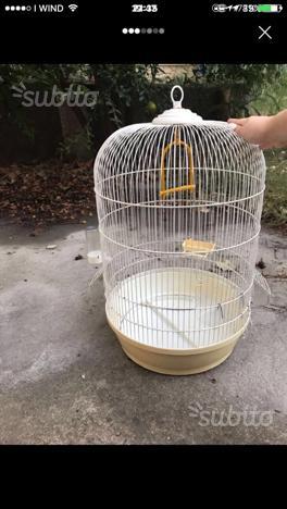 Gabbia completa per uccelli