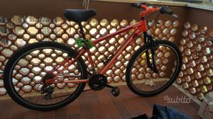 Mountain Bike nuova