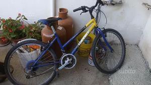 Top bike