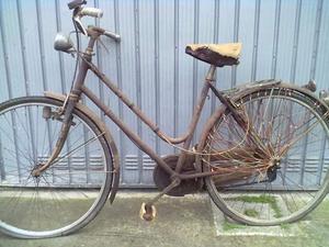 Cerco: Vecchie bici
