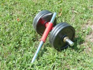 Coppia di bilancieri con pesi a disco di 2g