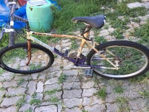 Mountain bike da sistemare