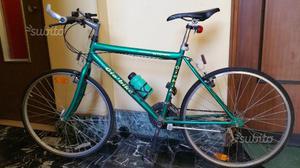 Mountain bike gio'bike sport-perfetta-solo euro 65
