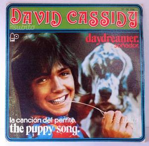 Disco vinile 45 giri David Cassidy