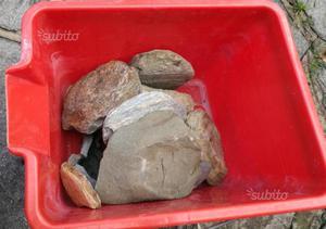 Acquario vasca wave terrario x pesci e tartarughe posot for Acquario tartarughe prezzo