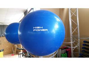 Swiss Fit Ball e carrelli High Power, usato