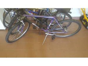 Mtb bicicletta mountain bike uomo 26