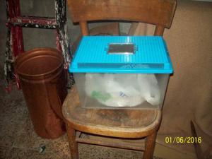 Laghetto per pesci e tartarughe posot class for Tartarughe vaschetta