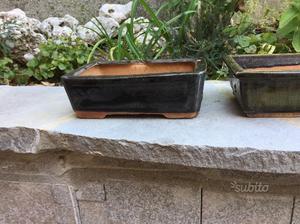 Vasi per bonsai in pietra posot class for Bonsai vendo