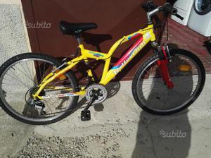 "Bicicletta bambino ruota 24"""