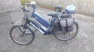 2 bici elettriche